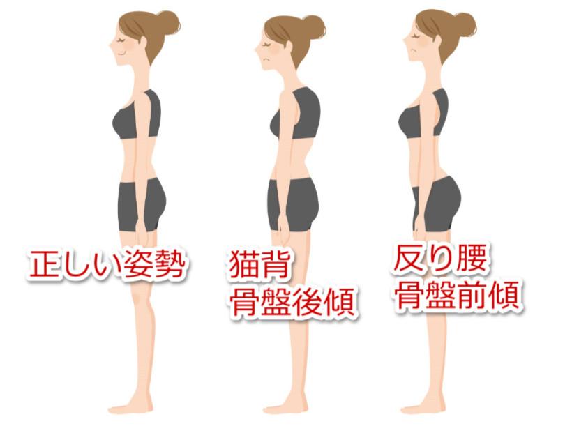 骨盤の角度と姿勢