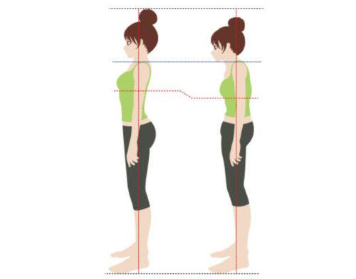 姿勢が変わればお尻の位置も変わる