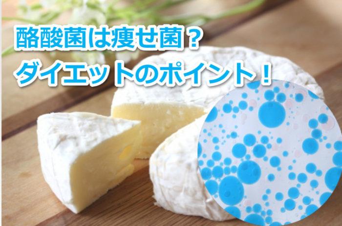 酪酸菌が痩せ菌と言われる理由は?ダイエットのポイント