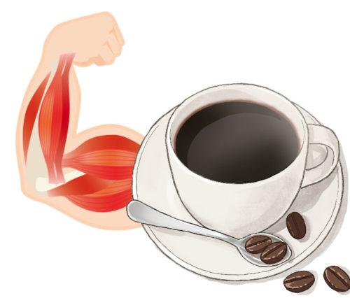カフェインで筋力アップ