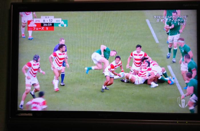 ラグビー日本対アイルランドの感想