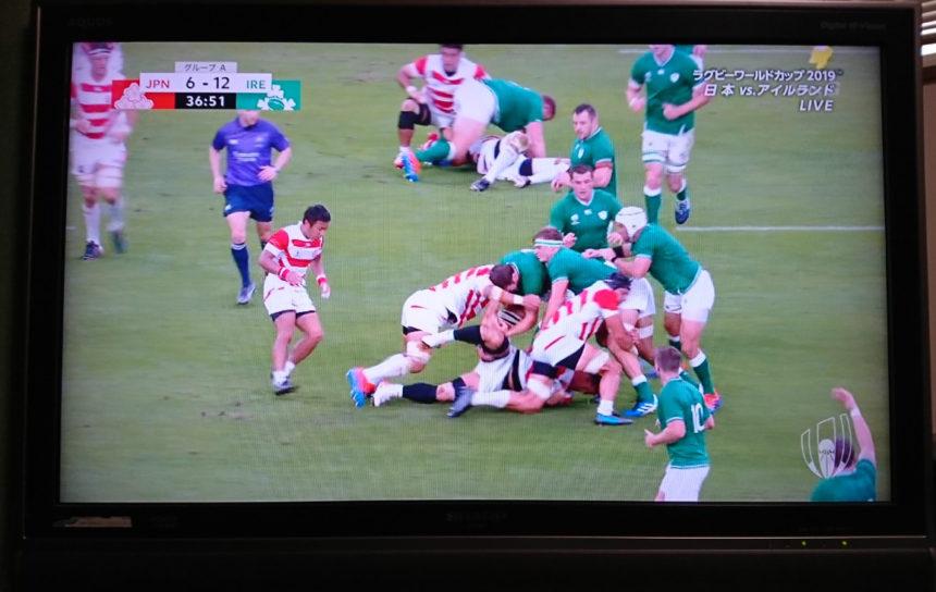 ラグビー 日本対アイルランド戦の感想と筋トレ日誌