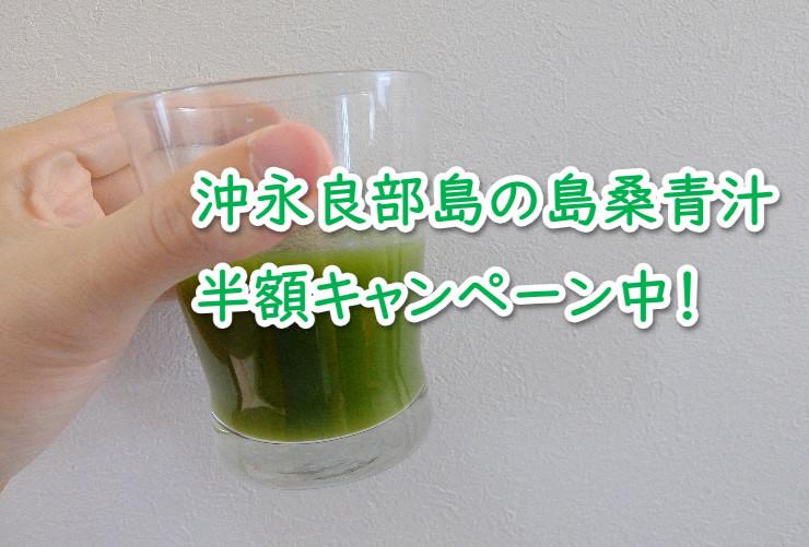 島桑青汁の半額モニターキャンペーン中!沖永良部島の長寿の秘訣