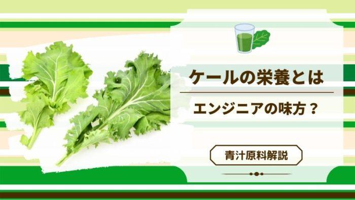 青汁原料「ケール」の意外な効果!緑黄色野菜の王様過ぎる栄養素