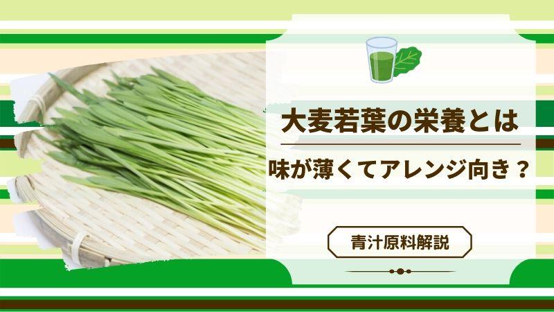 青汁の原料「大麦若葉」は栄養豊富で味が合わせやすい!