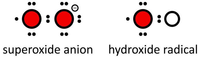 活性酸素の構造