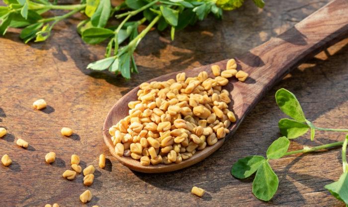 フェヌグリークの種子