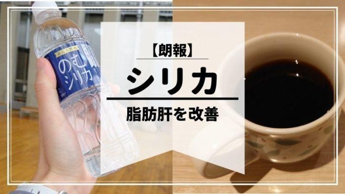 シリカ水は脂肪肝にも期待できそうな研究結果。コーヒーにしたらGOODでは