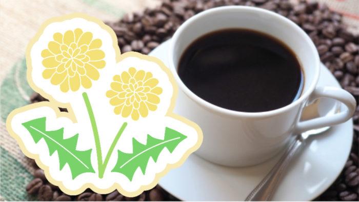 たんぽぽコーヒーはコロナや副反応を和らげてくれるかも【ACE2】